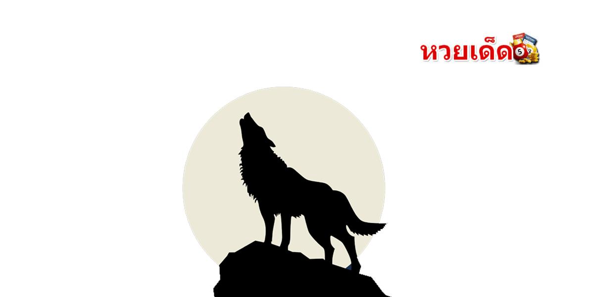 ทำนายฝันเห็นหมาหอน ได้ยินเสียงหมาหอน สุนัขหอน